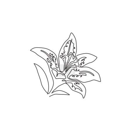 Illustration pour Unique une ligne dessin beauté lilium frais pour décoration murale affiche d'art. Fleurs de lys de tigre décoratives imprimables pour carte d'invitation de mariage. Illustration vectorielle de dessin continu moderne - image libre de droit