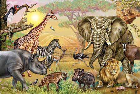 Photo for African savannah animals: rhinoceros, raven, lapwing, hyena, weavers, ostrich, leopard, warthog, oryx, gazelle, digger, stork, elephant, zebra, giraffe, lion, realistic drawing - Royalty Free Image