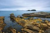 Dramatic landscape of the Ballintoy Harbor shoreline in Northern Ireland