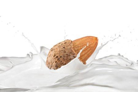 Photo pour Amande et lait avec des éclaboussures sur le fond blanc - image libre de droit