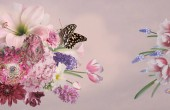 """Постер, картина, фотообои """"Весенние цветы, тюльпаны, гиацинты, Ветреница, примулы Блум и бабочка. Букет красивых сад цветов на розовый. Цветочные украшения. Старинный фон. Стиль барокко."""""""