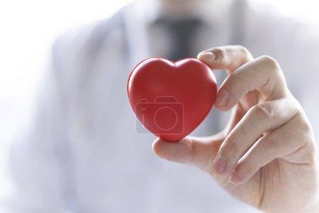 Photo pour Le médecin tient un coeur dans les mains. Coeur est une vie! - image libre de droit