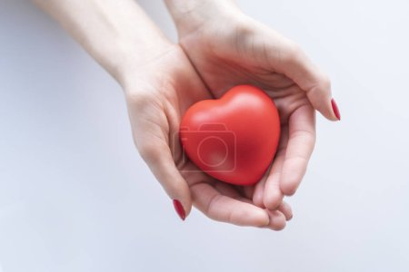 Photo pour Coeur rouge part femelle. - image libre de droit
