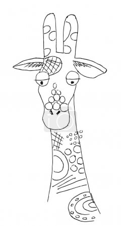 Illustration for Vector Of A Giraffe Head On White Background, Wild Animals. Cute giraffe drawing. The design of postcards, booklets, flyers. Line drawing. - Royalty Free Image