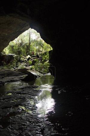 Foto de Hermosa vista panorámica de la naturaleza salvaje como telón de fondo - Imagen libre de derechos