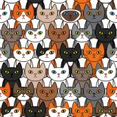 Many different ute cats background Seamless pattern