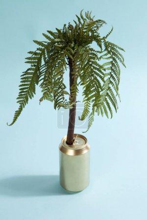 Photo pour Un palmier poussant dans une boîte d'or. Photographie minimaliste et drôle de couleur nature morte - image libre de droit