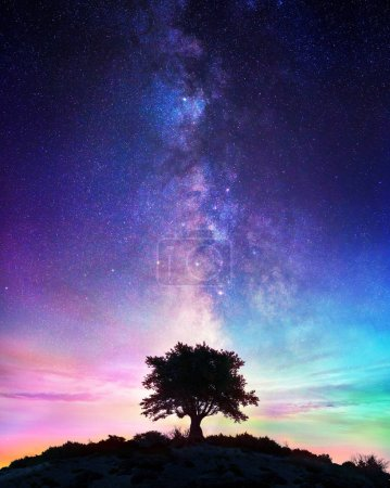 Photo for Starry Night - Lonely Tree With Milky Way - Royalty Free Image