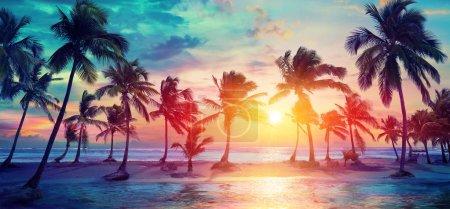 Photo pour Silhouettes de palmiers sur la plage tropicale au coucher du soleil - Couleurs vintage modernes - image libre de droit