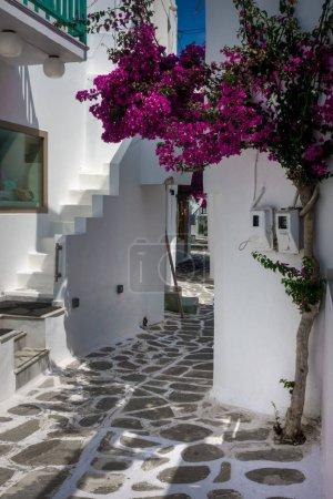 Photo pour Ruelle étroite par des bâtiments, Paros, Grèce - image libre de droit