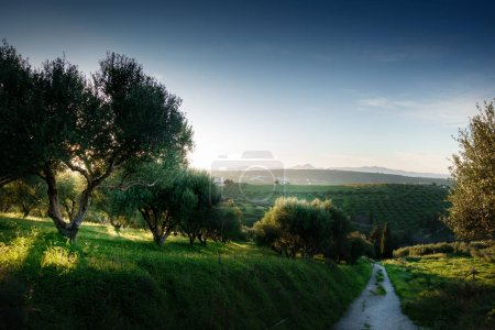 Photo pour Vue panoramique du paysage et de la montagne à Crète, Grèce - image libre de droit