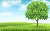 Tree on landscape background.
