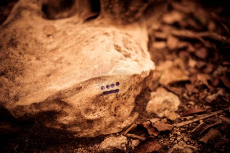 Photo pour 9 nombre maya marqué dans une grosse roche sur la forêt - image libre de droit