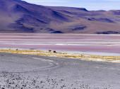 """Постер, картина, фотообои """"Красивые горы Пейзаж с небом и облаками в Боливии"""""""
