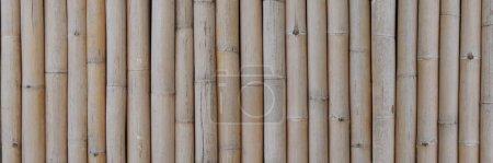 Fond de bannière en bambou brun sec. Fond de bambou sec.