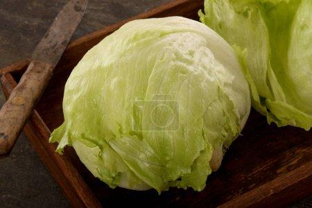 Photo for Fresh iceberg salad leaves - Royalty Free Image