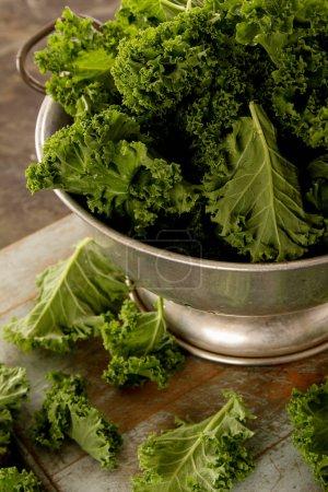 Preparing fresh kale leaves...