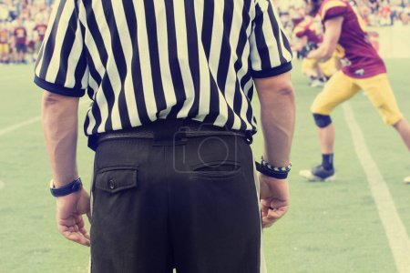 Back view of referee on american football field