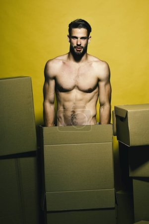 Photo for Guy with naked torso stands behind boxes. Man with beard isolated on yellow background. Sexuality and moving concept. Macho with nice face stands straight. - Royalty Free Image