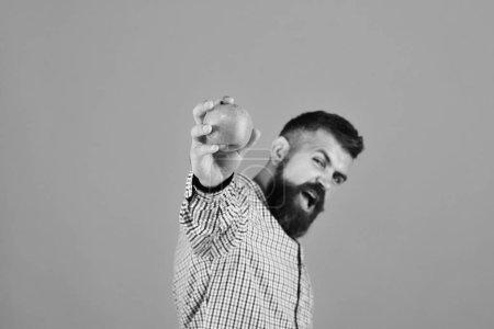 Photo pour Concept de jardinage et cultures d'automne. Le gars présente la récolte locale. Homme à la barbe tient pomme rouge isolé sur fond jaune, espace de copie. Fermier au visage excité met en avant les fruits frais, gros plan . - image libre de droit