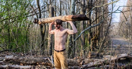 Photo for Man beaded brutal sexy lumberjack carry big heavy log. Lumberjack or woodman sexy naked muscular torso gathering wood. Man brutal strong attractive guy collecting wood in forest. Masculine leisure. - Royalty Free Image