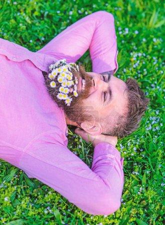 Photo pour Homme avec barbe sur le visage souriant profiter de la nature. Hipster avec bouquet de marguerites à la barbe relaxant. Unissez-vous au concept de la nature. Homme barbu avec des fleurs de marguerite reposent sur la prairie, fond d'herbe . - image libre de droit