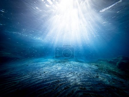 Underwater view of the seabed in San Lorenzo beach, in the southern Sicily, Italy. The shot is taken during a sunny summer day, with rays of light coming inside the water