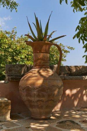 Photo pour Vase en argile grecque antique entouré de verdure et de cactus au sommet - image libre de droit