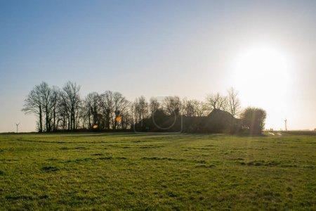 Photo pour Vue sur le bâtiment rural et les arbres pendant la journée - image libre de droit