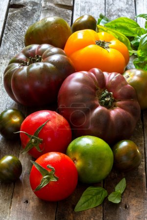 Photo for Colorful tomatoes harvest on table - Royalty Free Image