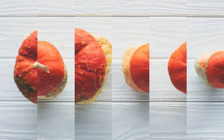 Photo for Collage of ripe orange natural pumpkin on white wooden table - Royalty Free Image