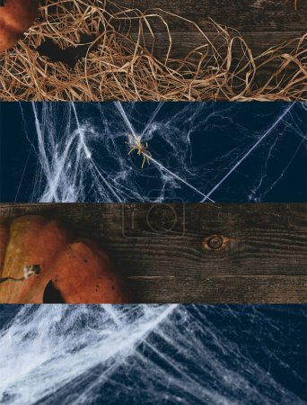 Photo for Collage of spiderweb and traditional Halloween pumpkin - Royalty Free Image