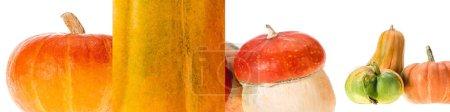 Photo pour Collage de citrouille naturelle orange mûre isolée sur le blanc - image libre de droit