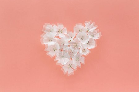 Photo for White heart shape of flowers on pink background - Royalty Free Image