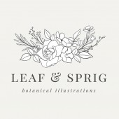 Floral Botanical Logo Illustration - Botanical logo design with hand drawn illustrations The elements can be separated and rearranged or used individually