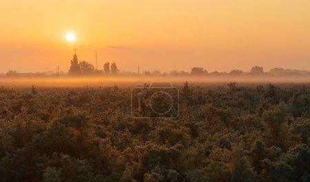 Photo for Dawn fog over Neftechala village. Azerbaijan - Royalty Free Image