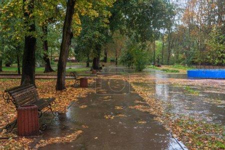 Photo for Walk in the rain in the autumn park. Boyarka town. Kiev region, Ukraine. 17 october 2020 - Royalty Free Image