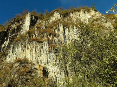 Photo pour Falaise avec plantes en automne et ciel bleu. Rocher dans les montagnes de l'Altaï en Russie. Octobre Jour ensoleillé. Photo prise de bas en haut. - image libre de droit