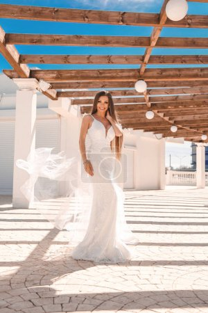 Photo for Fashion outdoor photo of beautiful woman with long dark hair in luxurious evening dress - Royalty Free Image