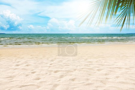 empty tropical beach in sunny day