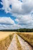 Summer landscape with dirt road between stubble fields and blue sky with amazing white clouds - Czech Republic, Europe