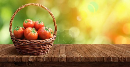 Basket of fresh, red tomatoes and garden