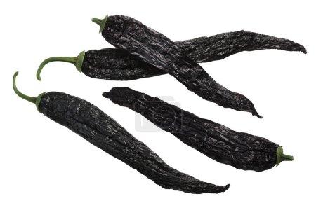 Photo pour Pasilla bajio chili ou chili noir, un piment de Chilaca séché, des gousses entières - image libre de droit