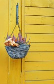 Hanging baskets with heather and fallen-down dry maple leaves on wooden wall. Image can beused as background.