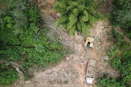 Photo pour Vue aérienne de la montagne du caucase en été. concept de déforestation - image libre de droit