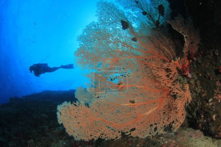 Photo pour Photo sous-marine de plongeur dans la profondeur de la mer bleue - image libre de droit