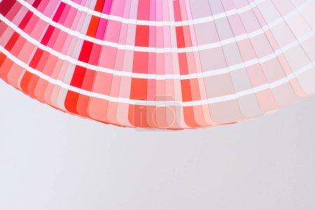 Photo pour Palette lumineuse et colorée de différentes couleurs pour la conception - image libre de droit