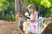 """Постер, картина, фотообои """"Ребенка, кормление диких оленей в зоопарке. Дети, кормить животных"""""""