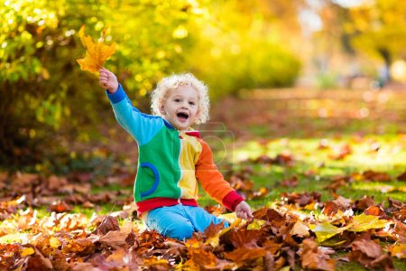 Photo for Kids play in autumn park. Children throwing yellow and red leaves. Little boy with oak and maple leaf. Fall foliage. Family outdoor fun in autumn. Toddler kid or preschooler child in fall. - Royalty Free Image