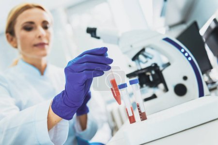 Photo for Genetic code. Pretty scientist wearing sterile gloves while taking test tube - Royalty Free Image
